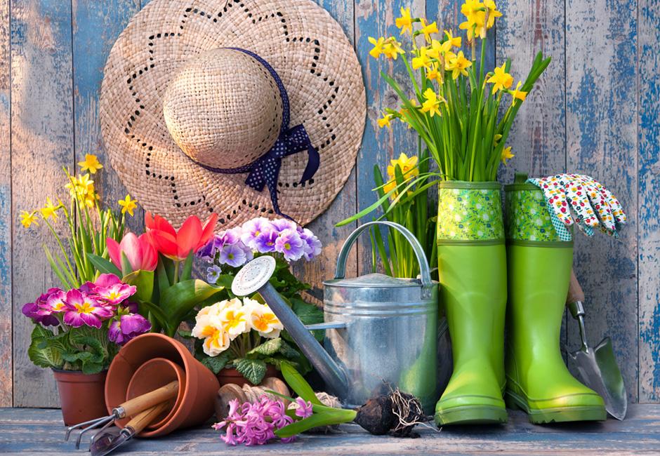 Mangiare sano in primavera