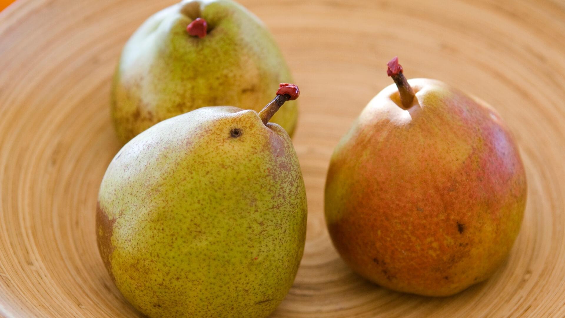 Pera Decana d'inverno e Decana del comizio: le origini di pera Angys