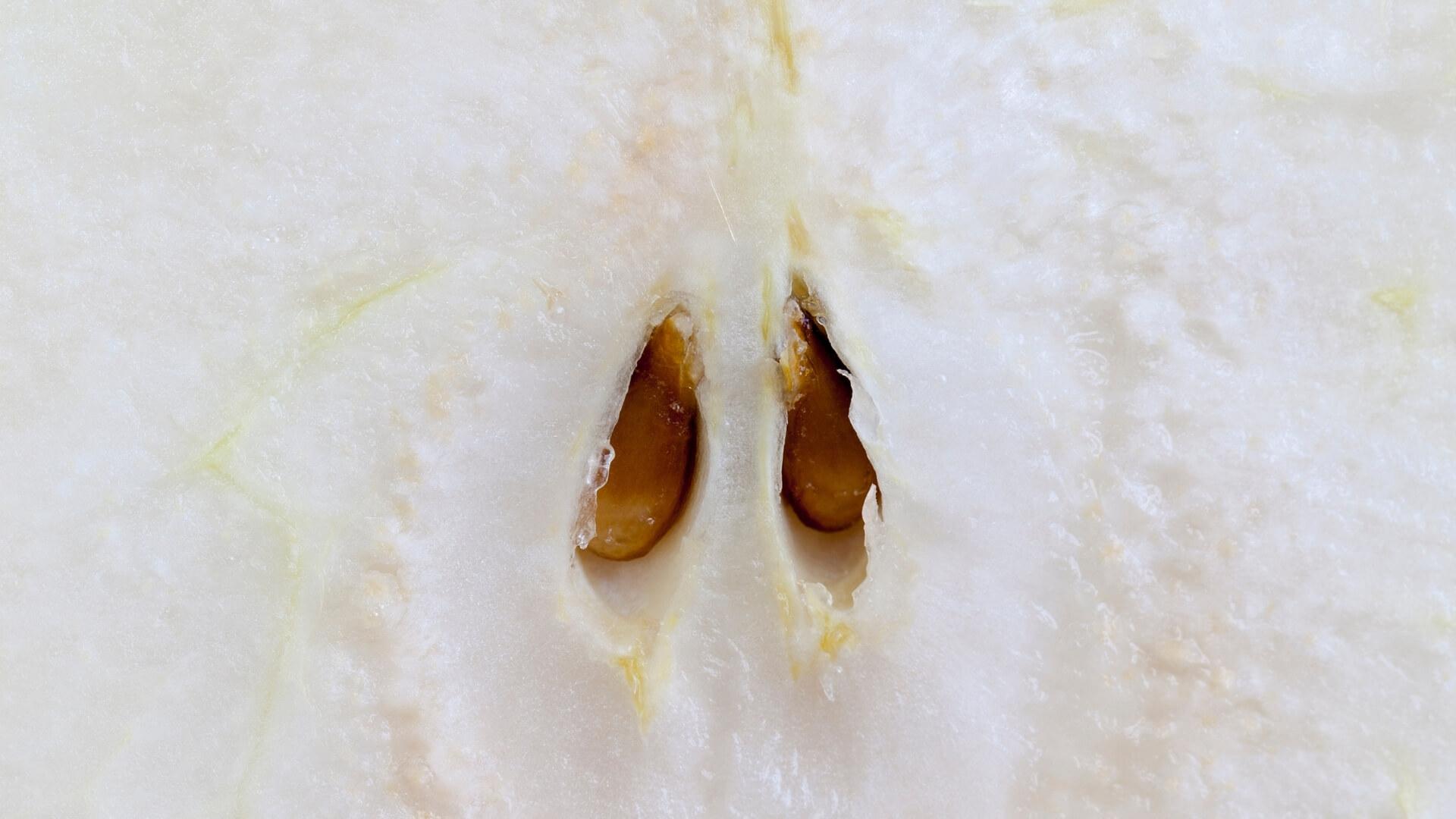 semi della pera: pere partenocarpiche senza semi