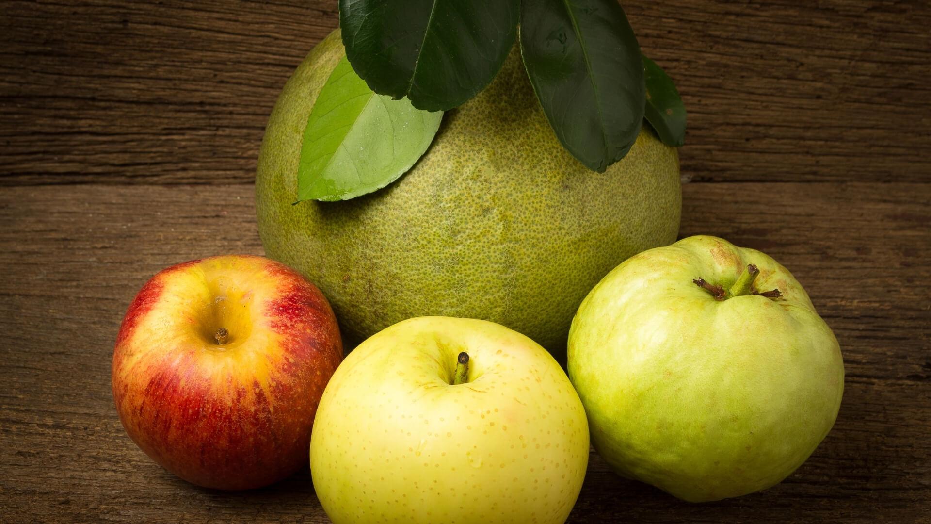 Pera Bergamotta, la varietà di origine belga che richiama gli agrumi